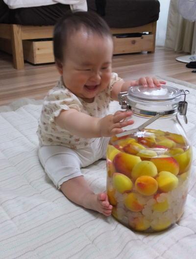 南高梅と赤ちゃん