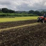 2020稲刈終了